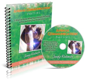 AC 1 of 2 Combined Book-CD